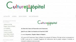 culture & hopital lamastre 2013