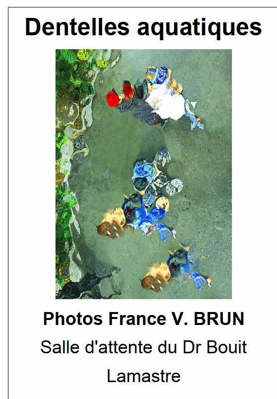 dentelles aquatiques france brun F