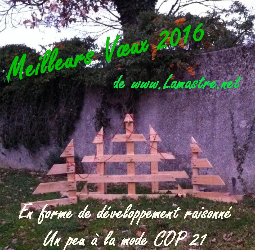 Voeux 2016 Lamastre net