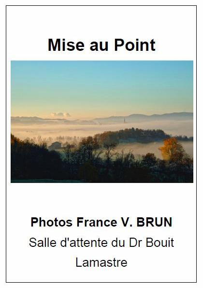 mise au point brun vianes affiche
