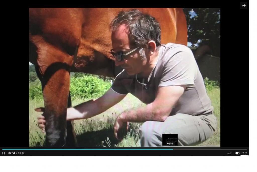patrice rouchossé docteur veterinaire