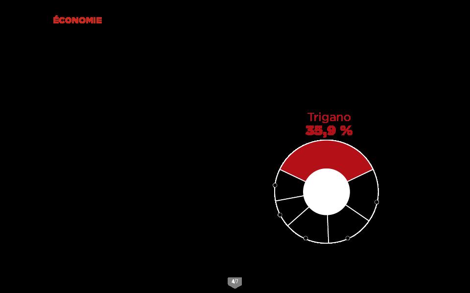 TRIGANO 4