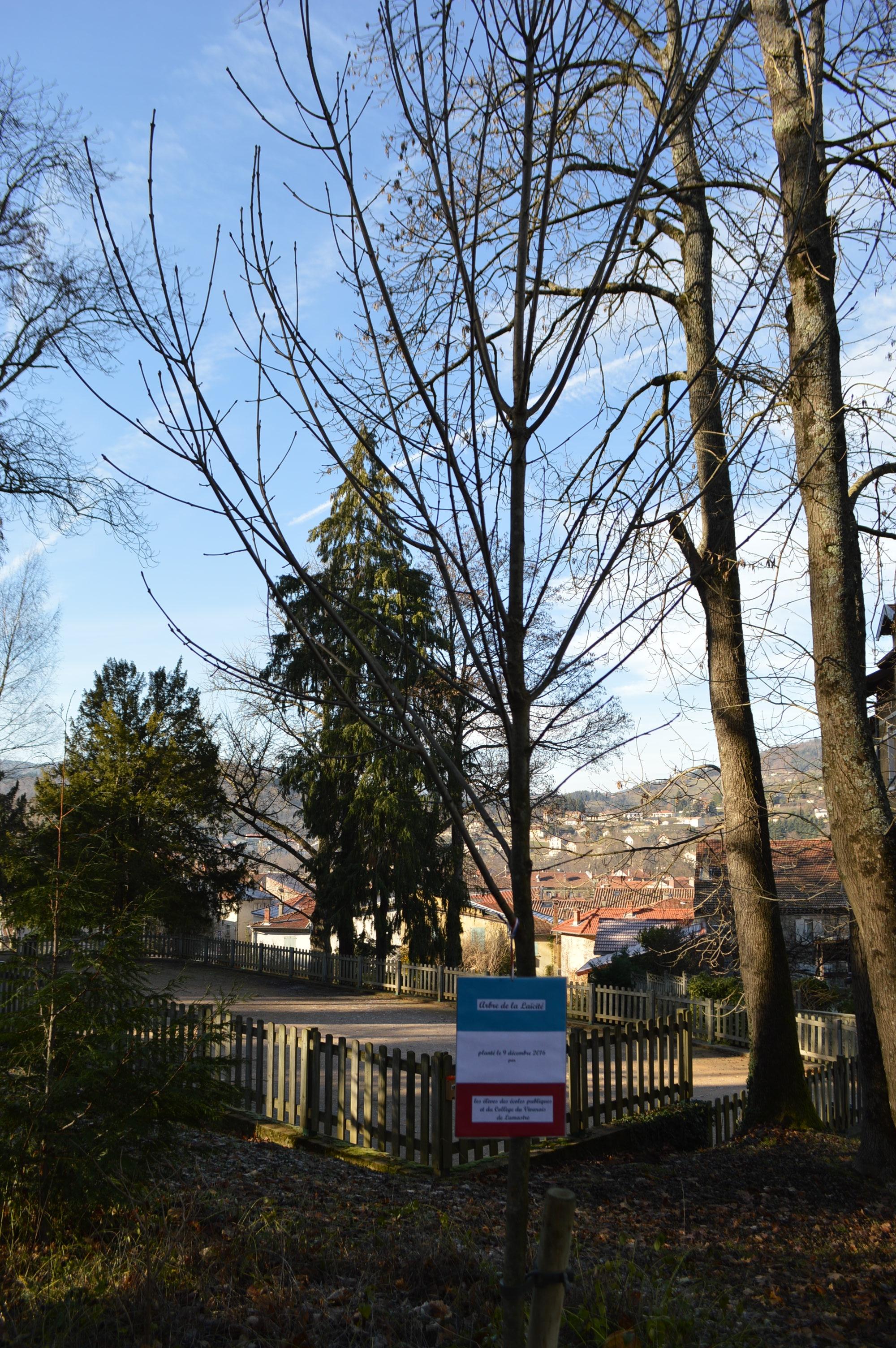 arbre-laicite-lamastre-parc-seignobos