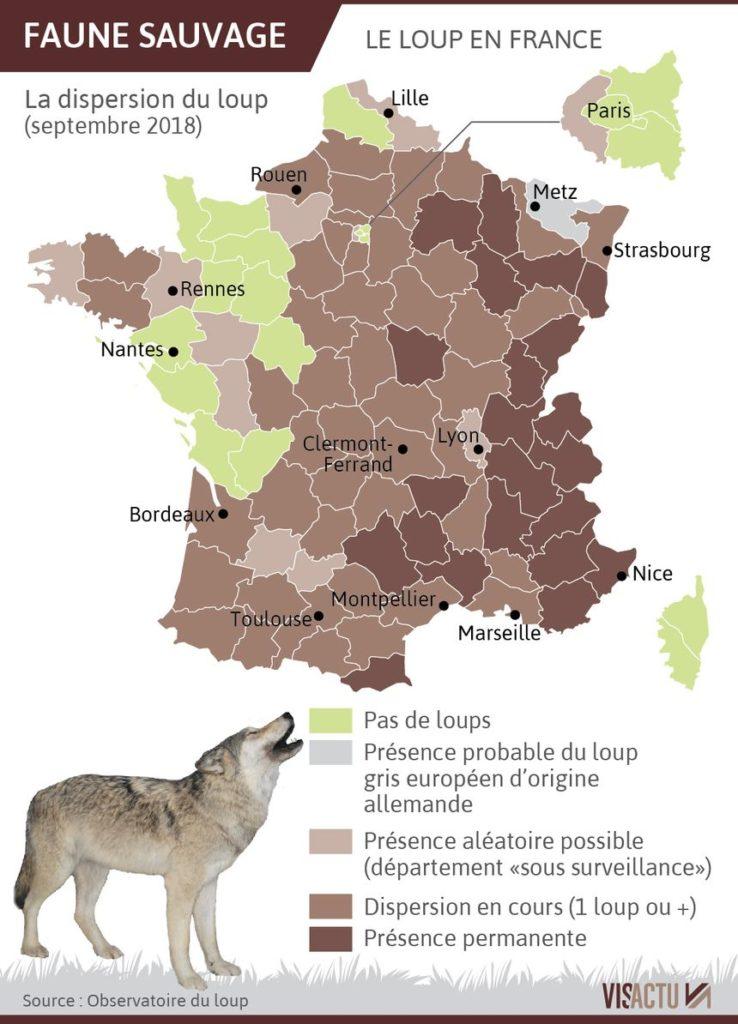 Présence du loup en France carte