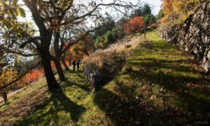 cropped-paysage_lamastre-1536x922